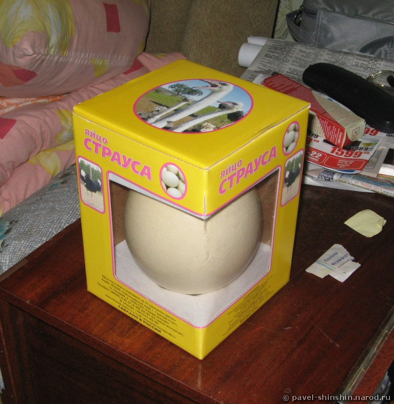 Страусиное яйцо в коробке