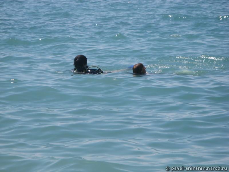 Павлик с инструктором всплыли